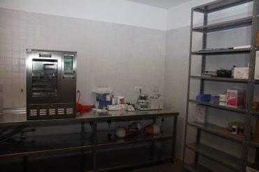 Facultad de Medicina - Grado en Odontología - Universidad de Salamanca